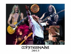whitesnake 2013