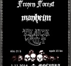 A Night Of Unholy Black Metal - 01.11.2014. Mochvara - Frozen Forest, Manheim, Black Cult - plakat